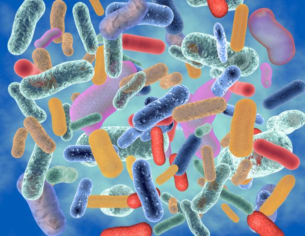 Abstract colorful bacteria 3D illustration. Abstract colorful bacteria 3D illustration. lactobacillus stock pictures, royalty-free photos & images