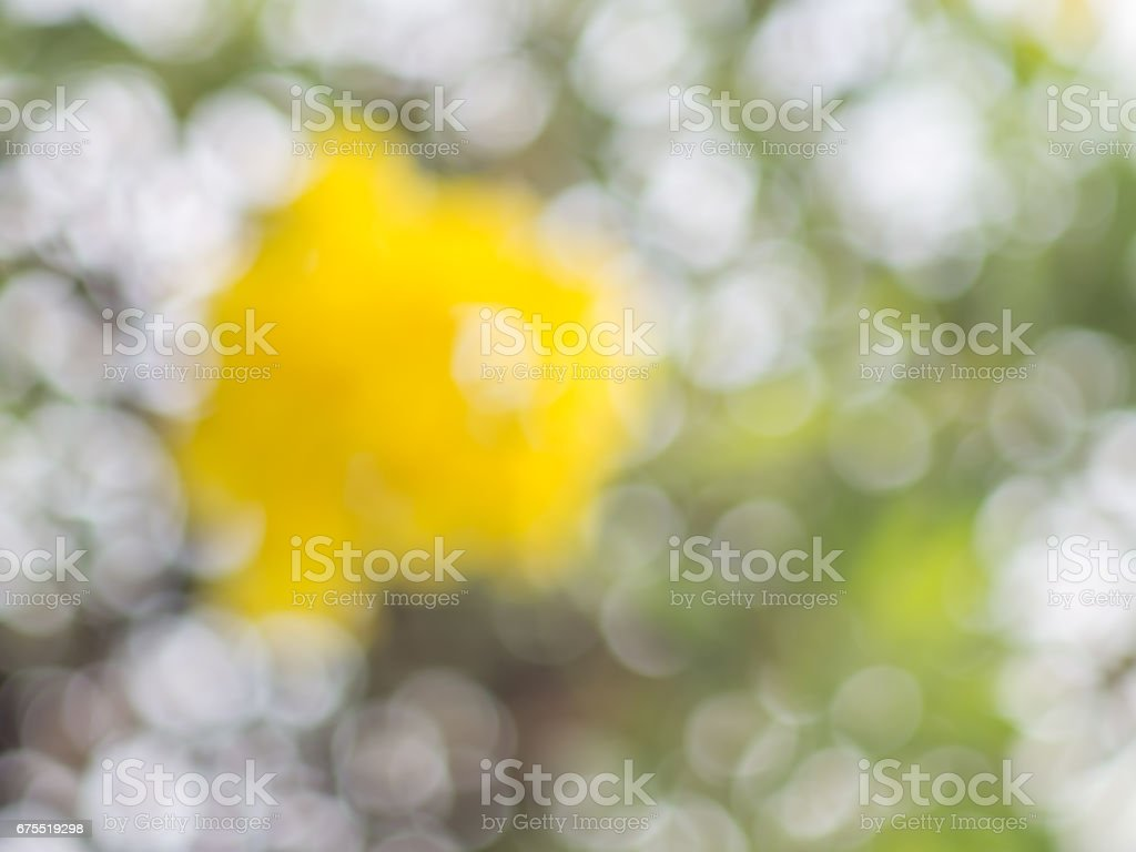 Abstract colorful bokeh background from nature in the bright day,blurred bokeh background. royalty-free stock photo