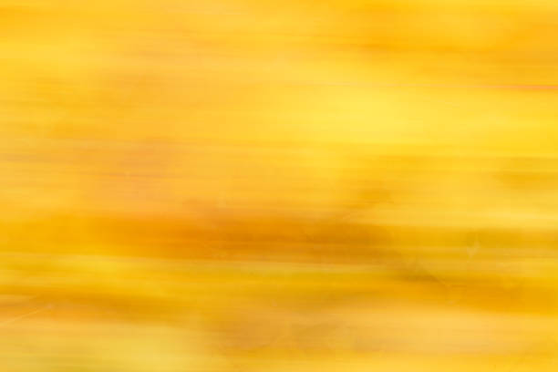 Abstract colorful fall background with yellow leaves stock photo