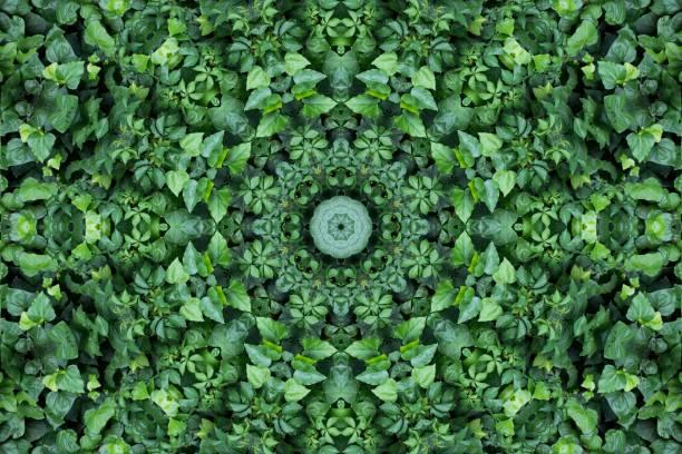 Abstract colorful modern circle mandala and kaleidoscope pattern for picture id978535284?b=1&k=6&m=978535284&s=612x612&w=0&h=b9vvm6lppvan1n0o6d1tllc7jo5lps3c0xajuhqdhoi=