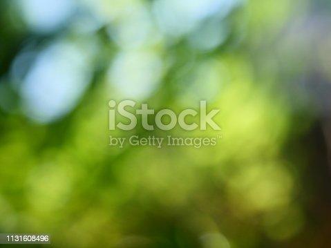 626588878 istock photo Abstract defocused green garden background 1131608496