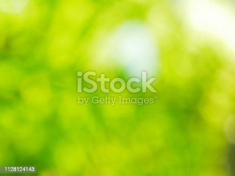 istock Abstract defocused green nature background 1128124143