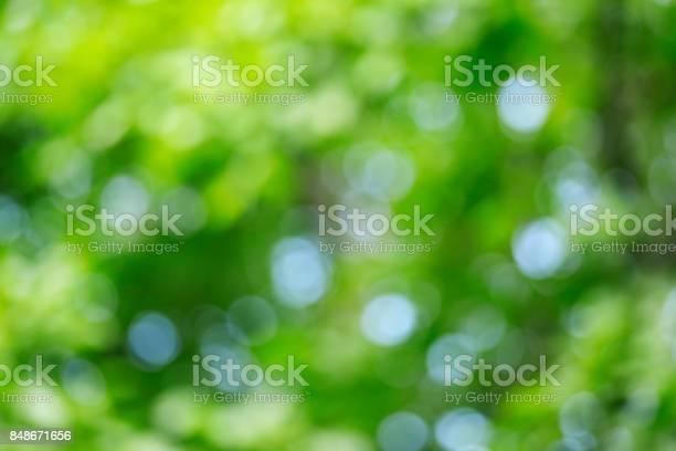 Abstract defocused green nature background picture id848671656?b=1&k=6&m=848671656&s=612x612&h=g y1ygndgvrmbvnbj9f7ez1wcjz0tx2qsnof5hvsedw=