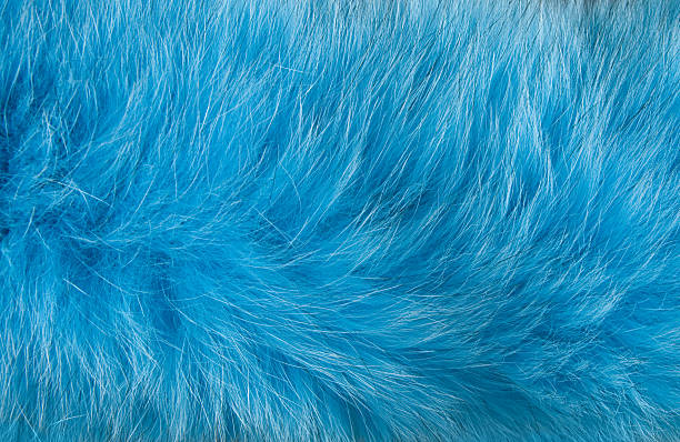abstract design of artificial blue fur moving in the wind - kürk stok fotoğraflar ve resimler