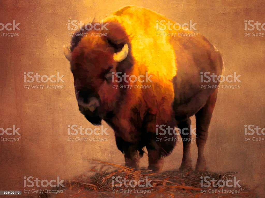 Abstrakte digitale Kunst-Buffalo – Foto