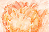 Abstract Fabric Flower Background, Artistic Floral Waving Cloth, Yellow Orange Petal pattern