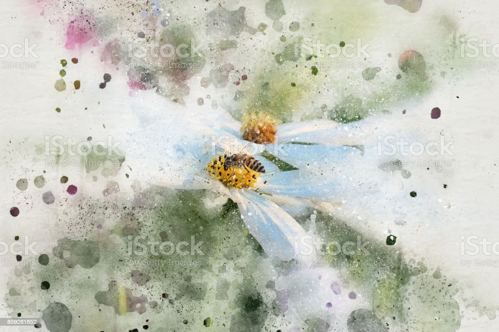 Abstract  Flower blooming on colorful watercolor painting background and Digital illustration brush to art. stock photo