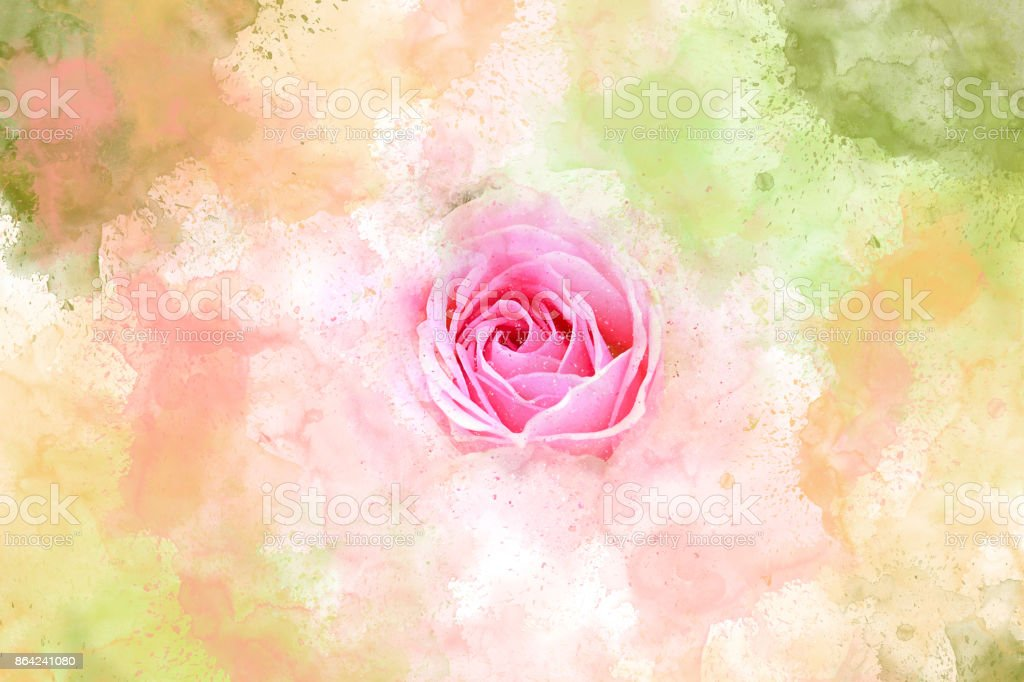 Abstract  Flower blooming on colorful watercolor painting background and Digital illustration brush to art. royalty-free stock photo