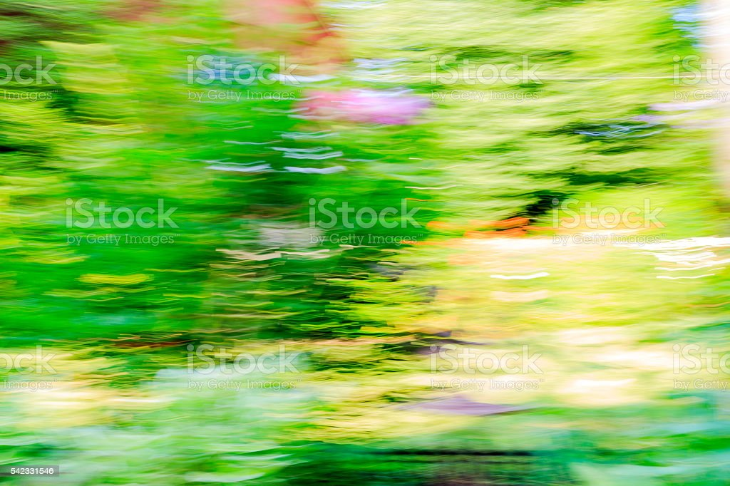 Abstract flower garden with blurred colors stock photo