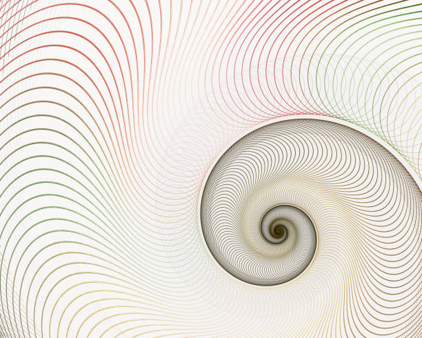 abstract fractal spiral. shell background - nautilus stock pictures, royalty-free photos & images