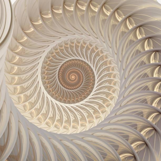 抽象分形螺旋。外殼背景 - 重複螺旋型 個照片及圖片檔
