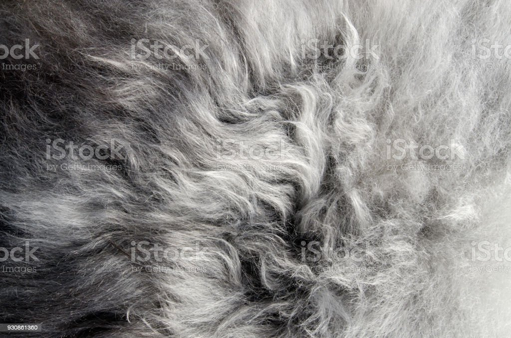 Abstract fur background stock photo