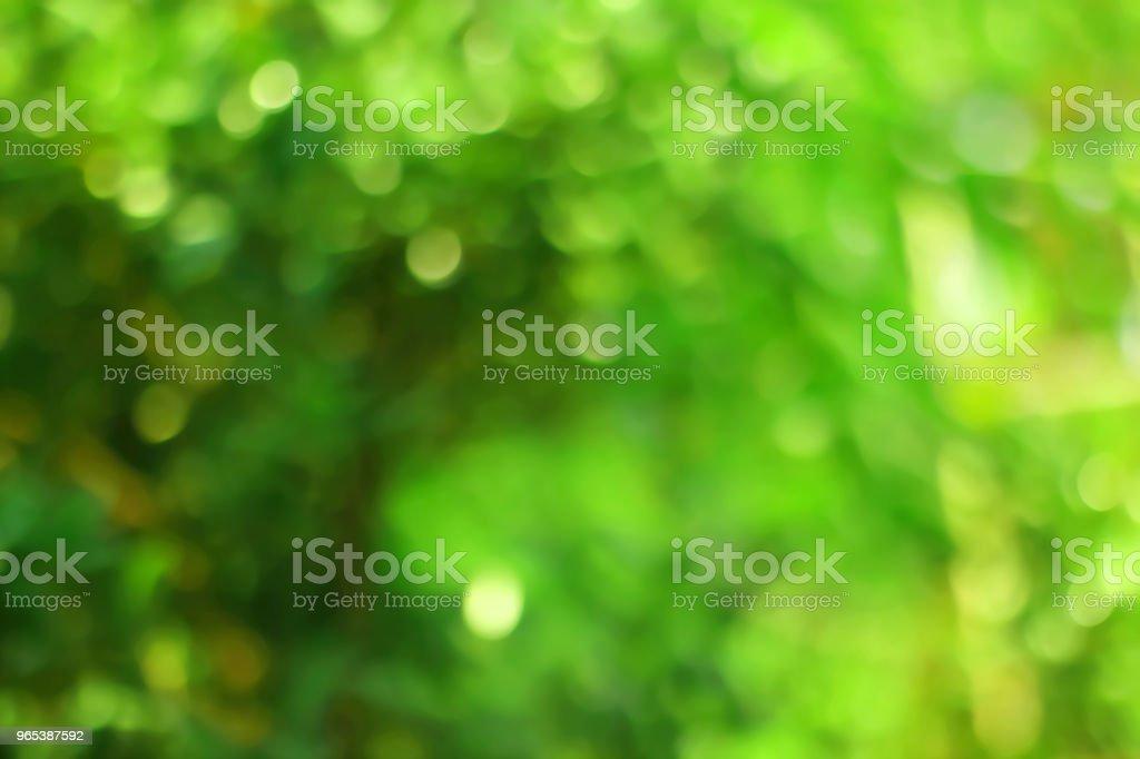 Abstract green bokeh background. zbiór zdjęć royalty-free