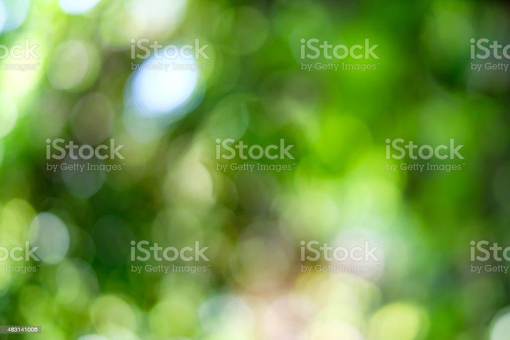 Bokeh Astratto Sfondo Verde Natura Fotografie Stock E Altre