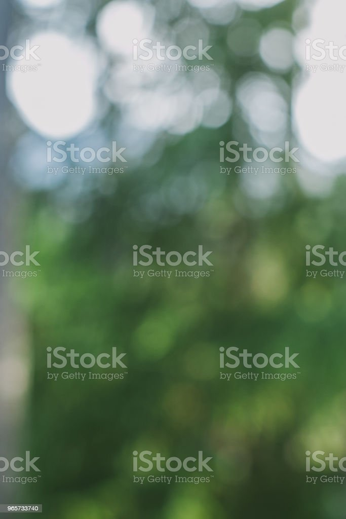 Abstract green bokeh out of focus. Green blurred background and texture for design. Leaves and trees out of focus. Light shinning tree leaves. - Royalty-free Abstract Stock Photo