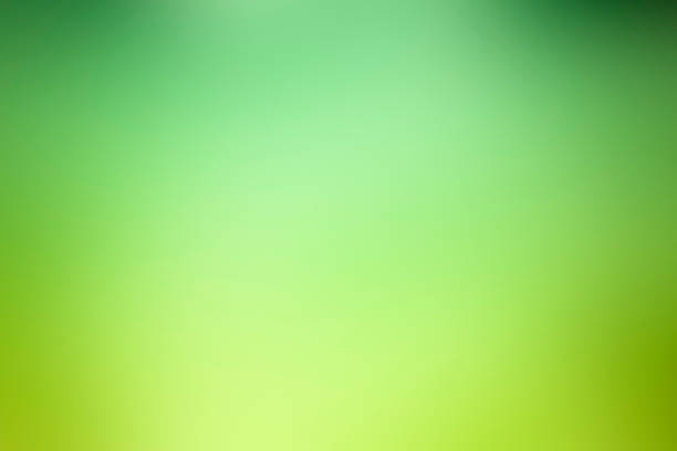 Abstract green defocused background - Nature stock photo