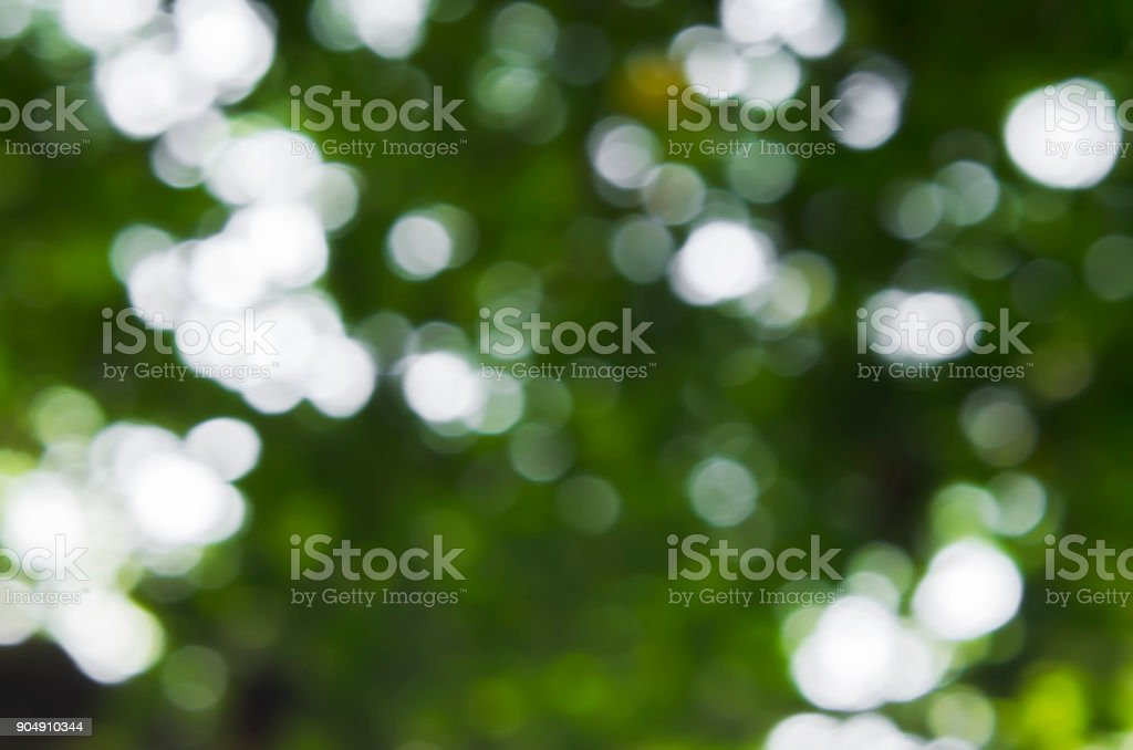 abstract green defocused blured bokeh stock photo