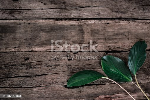 Flat lay creative frame of tropical nature leaves Monstera on rustic wood grunge background with retro , tropical jungle vacation and travel concepts.