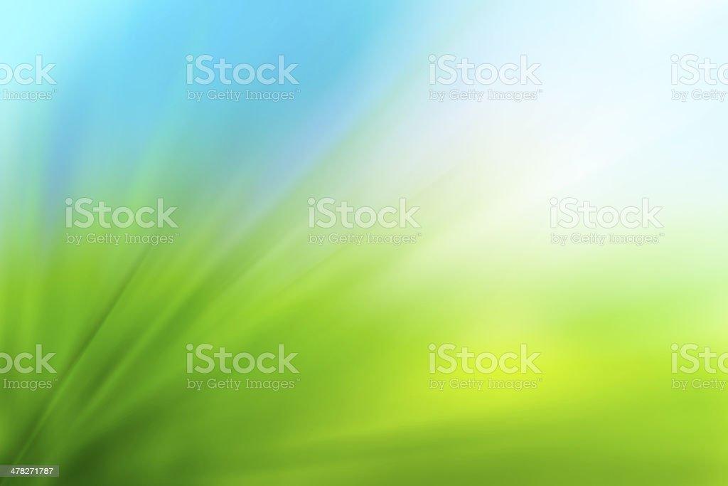 Abstrakt Grün Natur Hintergrund – Foto