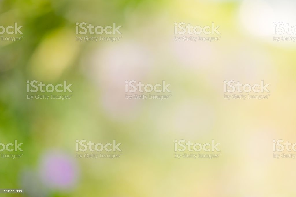 Abstract green shinny and out of focused natural backgrounds. stock photo