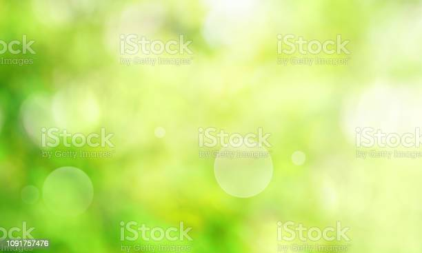 Photo of Abstract green spring scenery
