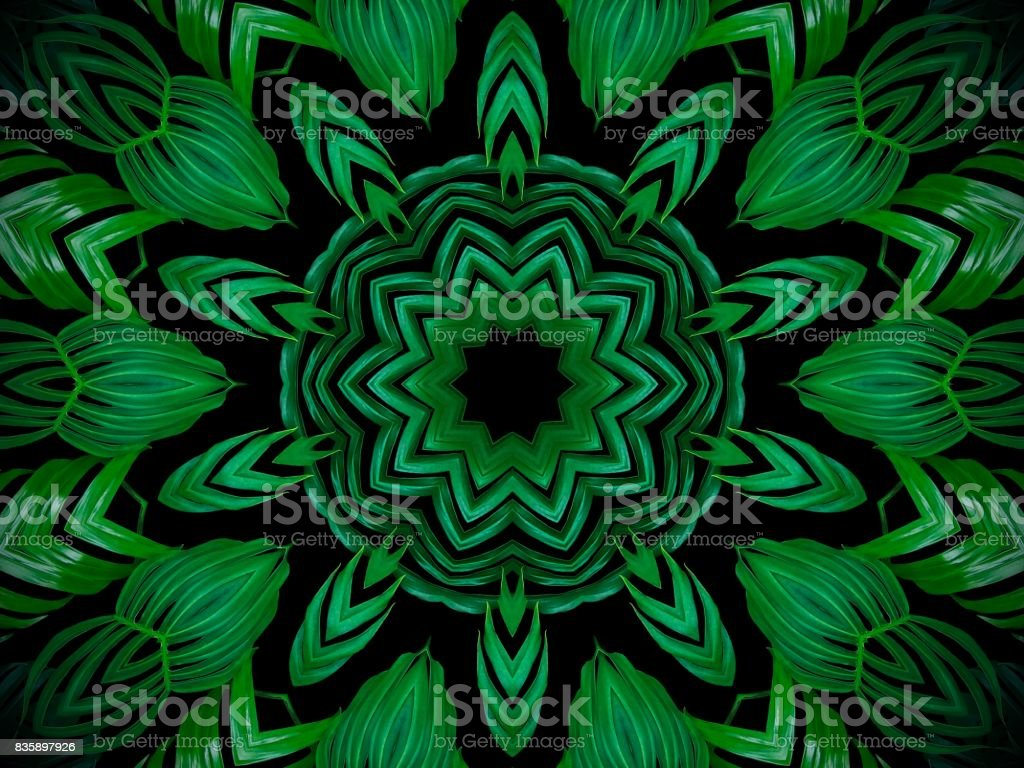 Abstract greenery background, palm leaves with kaleidoscope effect. stock photo