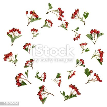 istock Abstract Hawthorn Berry Wreath 1086093066