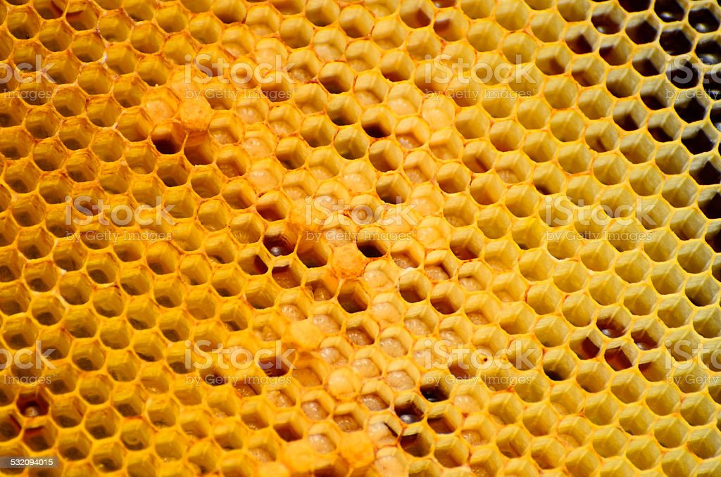 Abstract honeycomb pattern with honney forms stock photo