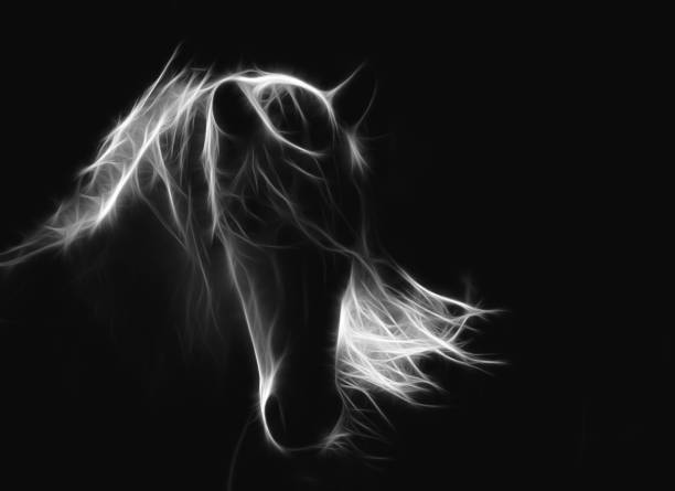 Abstract horse picture id1149587094?b=1&k=6&m=1149587094&s=612x612&w=0&h=wp43nqtzqri5rlfcssisaty2oz0saaalhay2fyrk7xg=