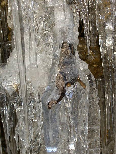 Abstract Ice stock photo
