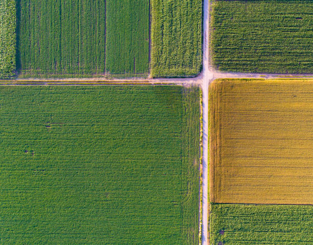 abstraktes bild von landwirtschaftlich genutzten feldern - aerial overview soil stock-fotos und bilder