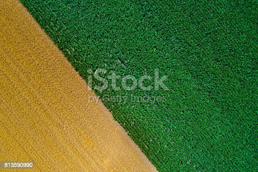 istock Abstract image of fields 813590990