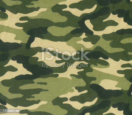 This is a picture of a camouflage scanned in flatbed scanner.