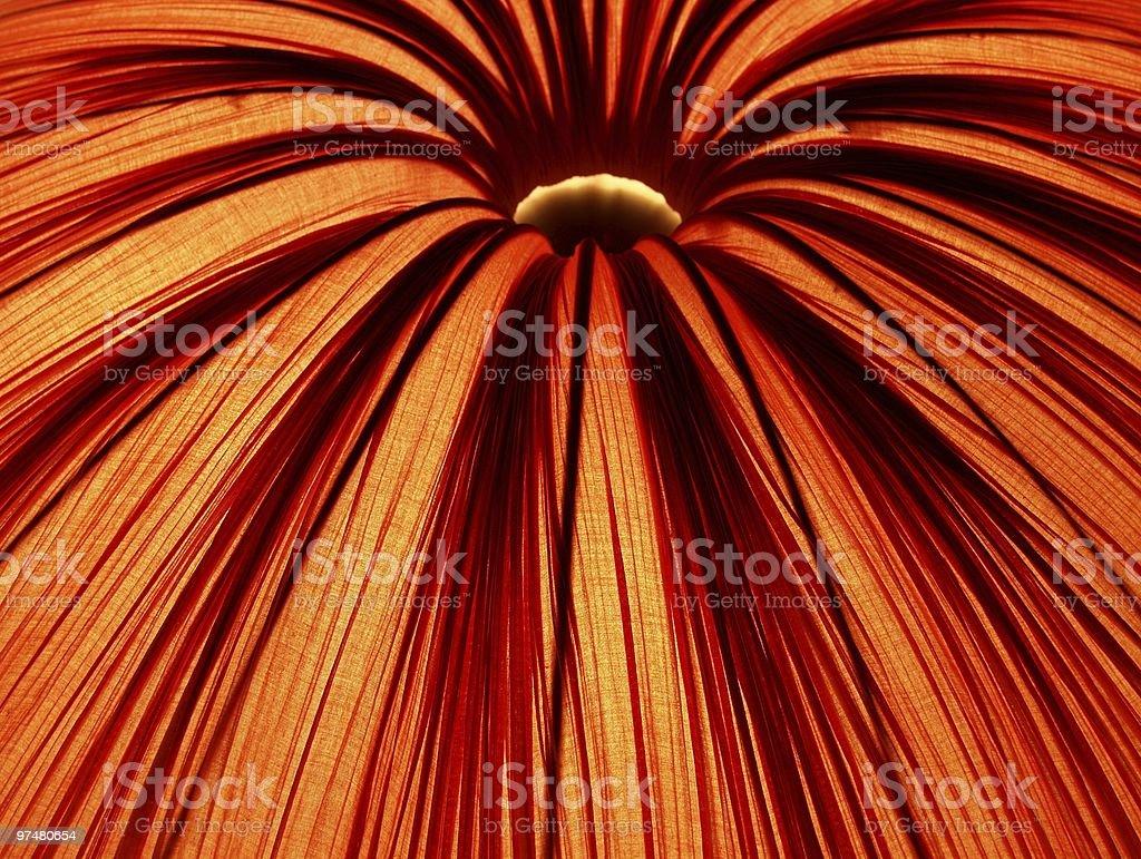 Abstract Lampshade stock photo