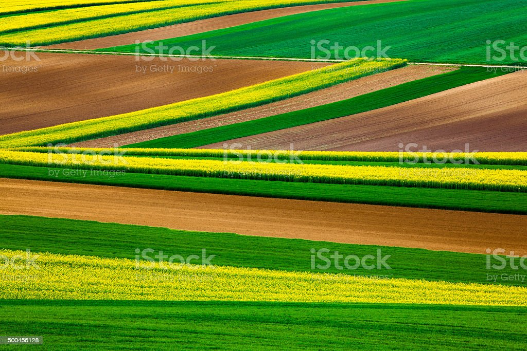 Abstract lines in the fields stock photo