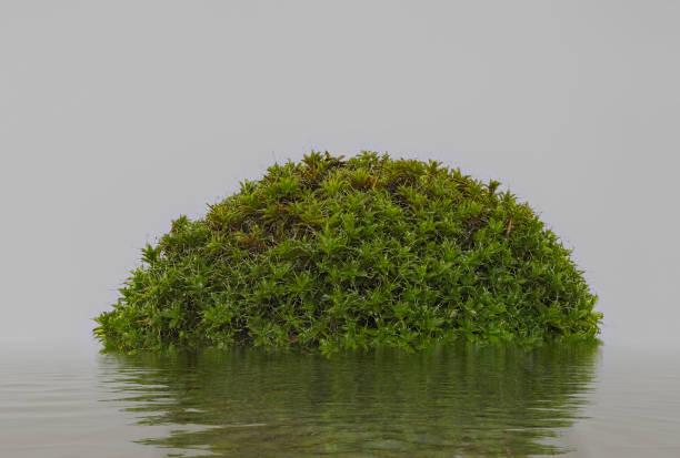 Abstrakte einsam Insel – Foto