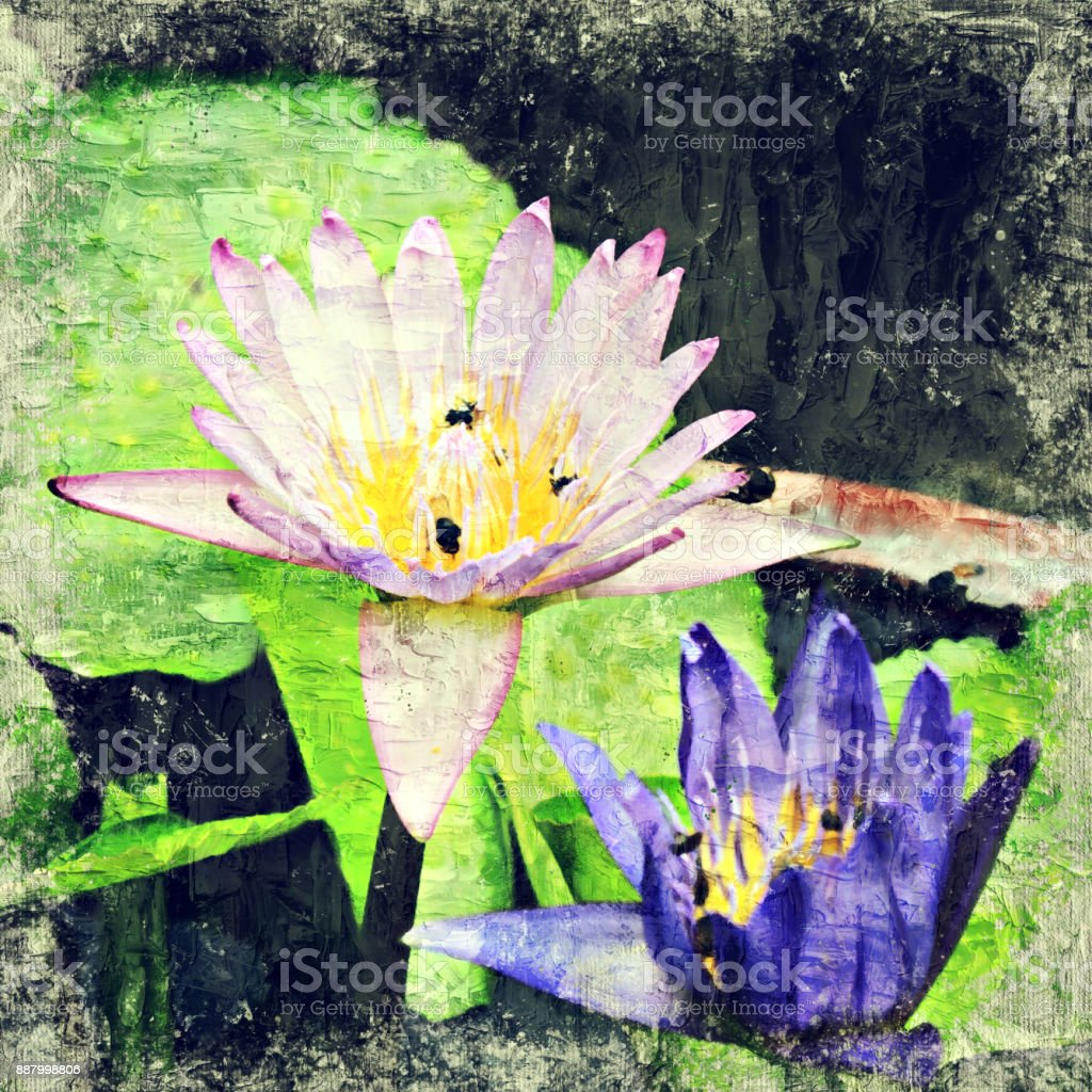 Abstract Lotus Flower Blooming On Colorful Watercolor ...