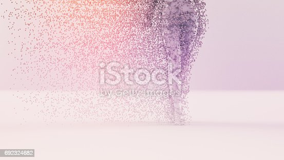 687269072 istock photo Abstract low poly figure 692324682