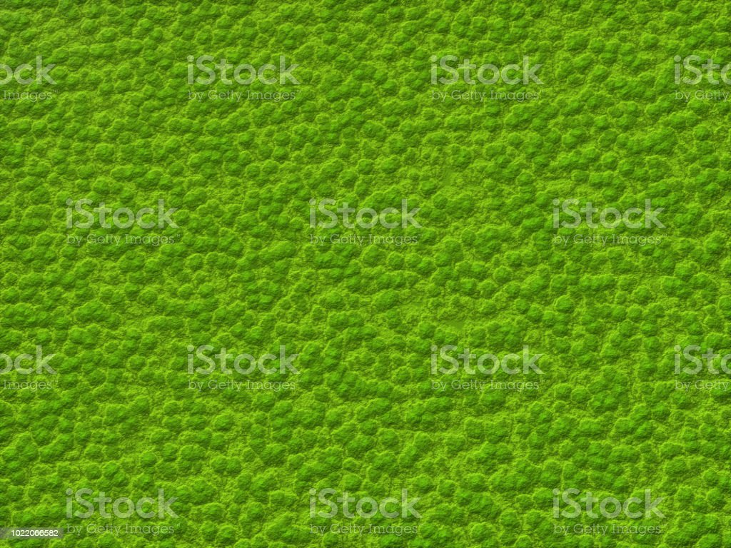 Abstract Moss Background stock photo
