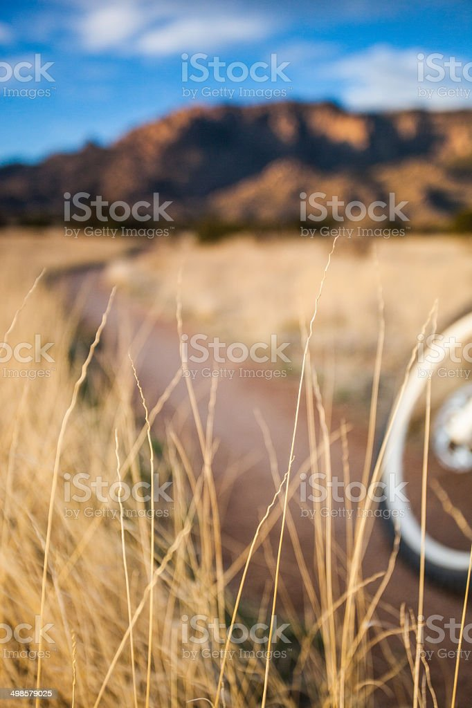 abstract mountain biking nature royalty-free stock photo