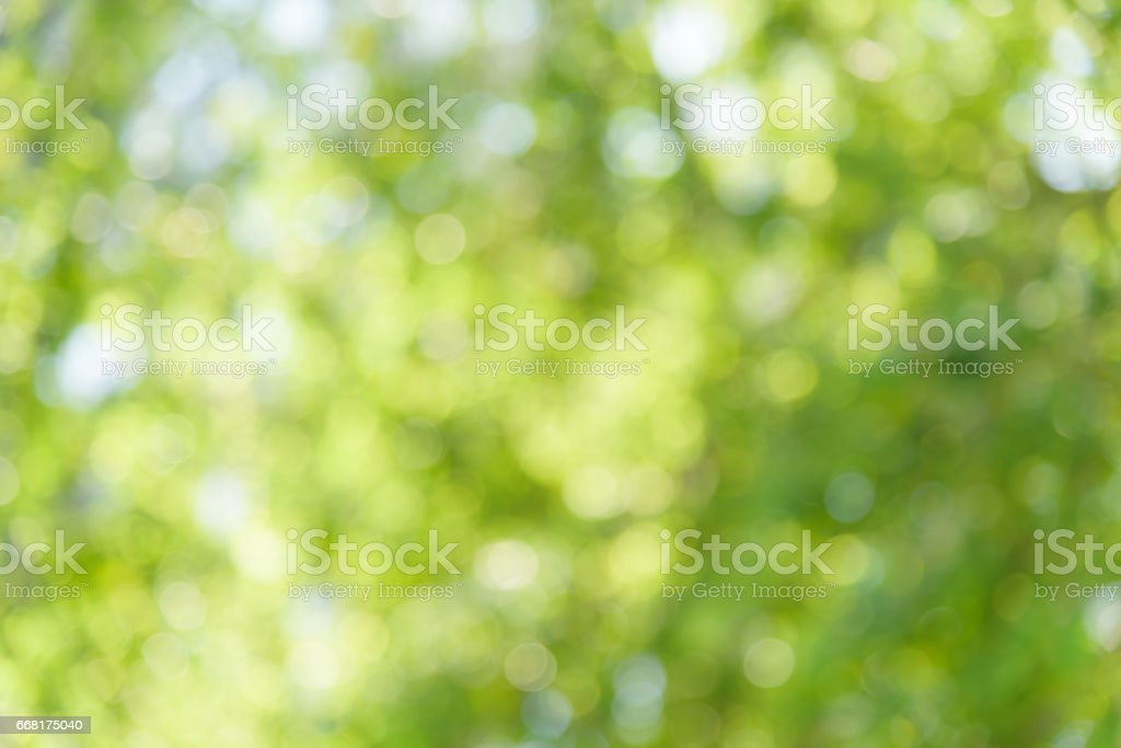 Abstract nature background. – Foto
