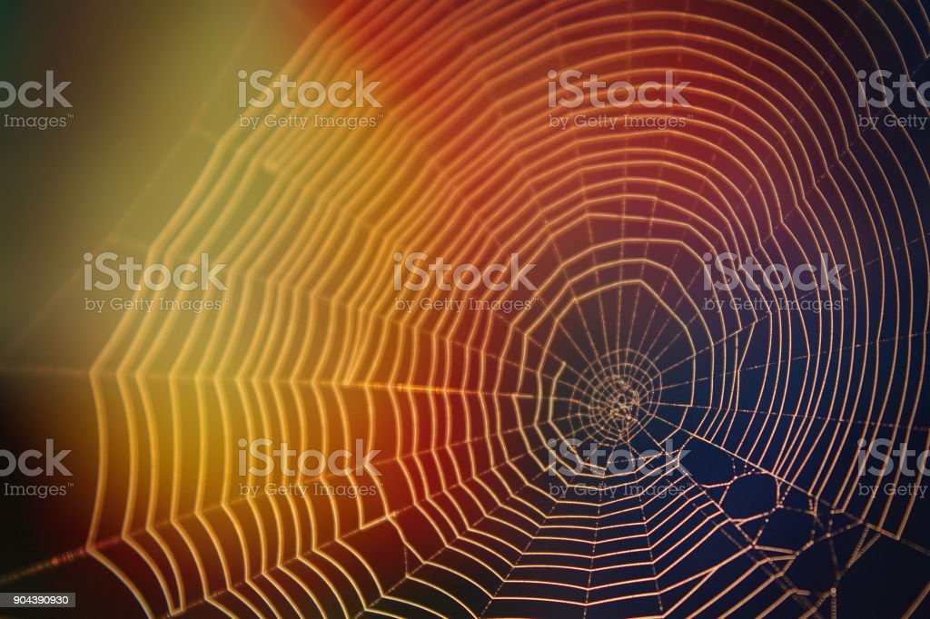 Abstract Nature Photography of Spider Web in the Sunlight with Many Colors Yellow and Blue stock photo