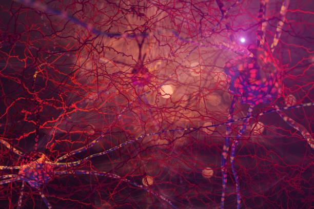 Abstract Neuron Cell Network Nerve Cell, Nervous System, Synapse, Connection, Brain neurotransmitter stock pictures, royalty-free photos & images