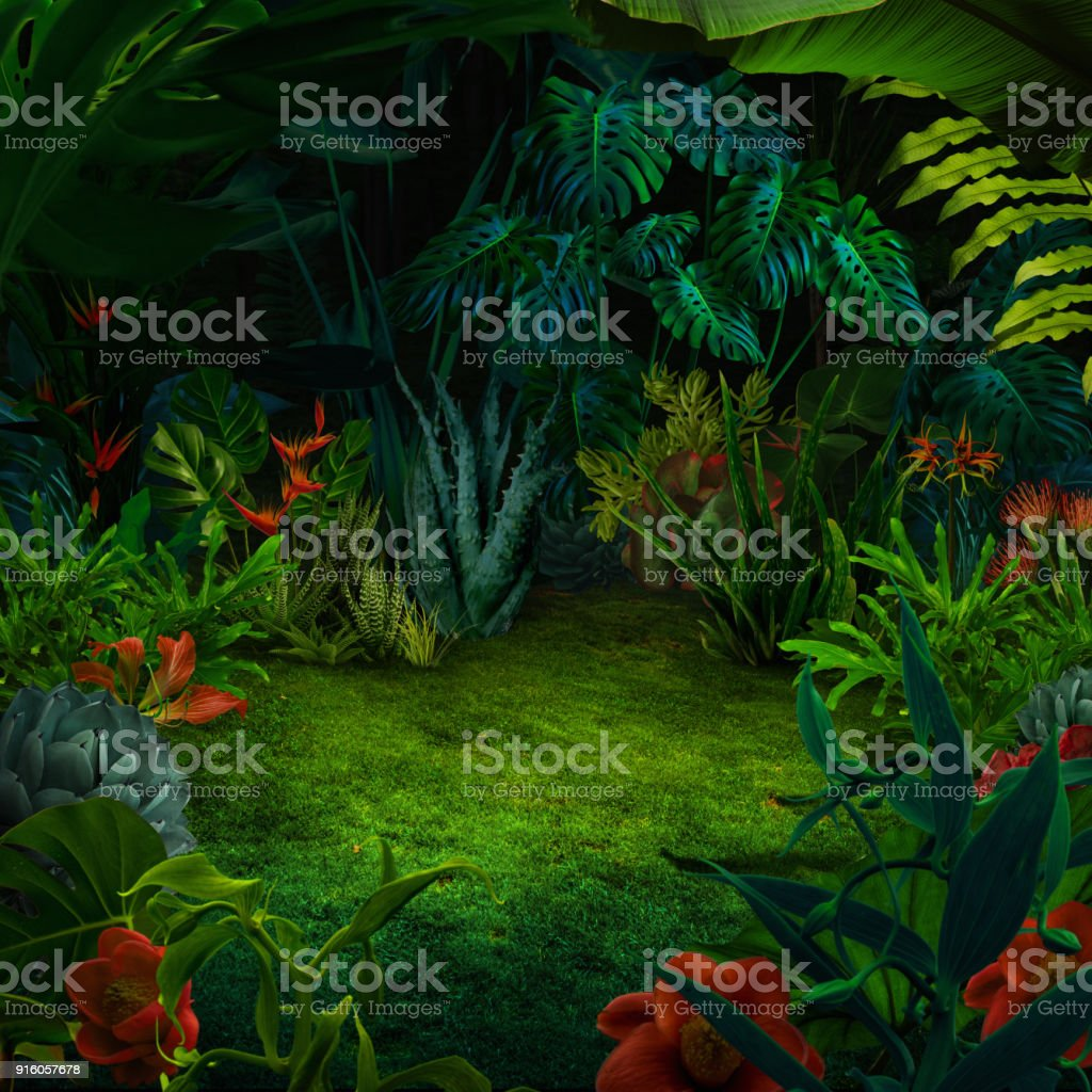 Fundo de selva abstrata à noite - foto de acervo