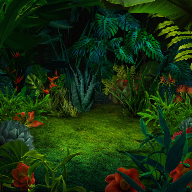 Abstract night jungle background stock photo