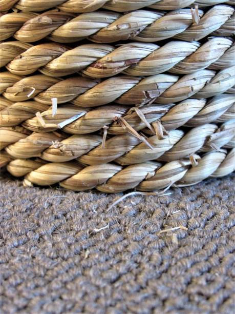 Abstract Of Cats Scratching post stock photo