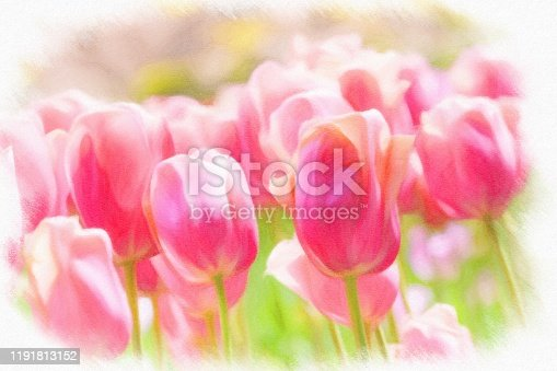 istock Abstract painted tulip art backgrounds. 1191813152