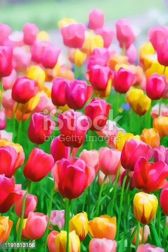 istock Abstract painted tulip art backgrounds. 1191813156