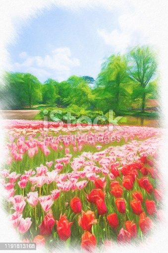 istock Abstract painted tulip art backgrounds. 1191813168