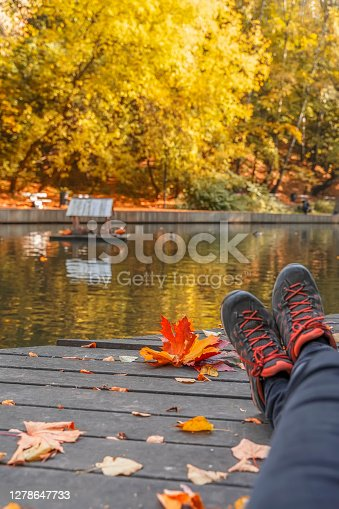 Rest at nature. Abstract pair of legs in sport sneakerson background of bright fallen leaf, pond with ducks in a city park. Fall concept. Seasons, autumn walk, nostalgic mood, active life stile